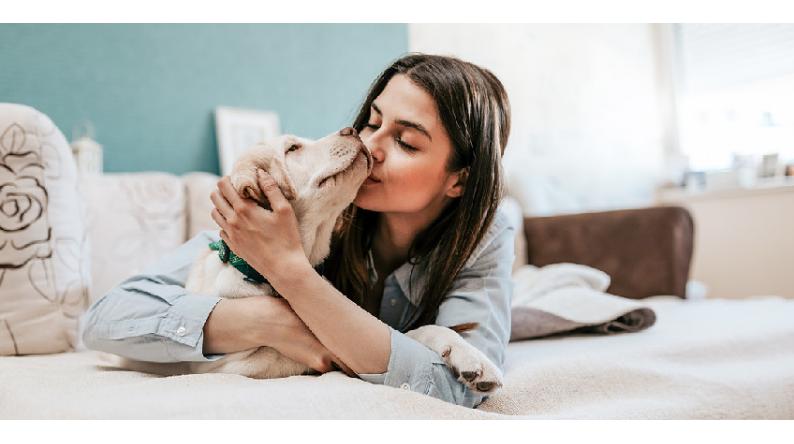 Prendersi cura degli animali domestici