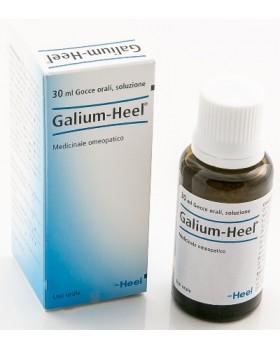 HEEL GALIUM GOCCE 30 ML