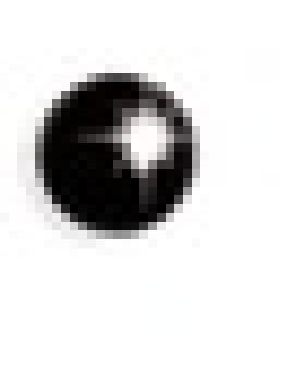 ORECCHINI STERILI IN898C PALLINA NERA 4MM
